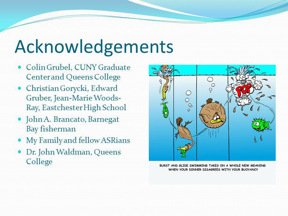 Acknowledgements Colin Grubel, CUNY Graduate Center and Queens College
