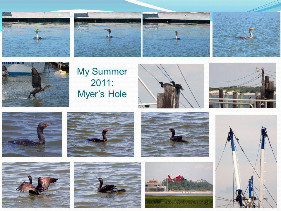 My Summer 2011: Myer's Hole