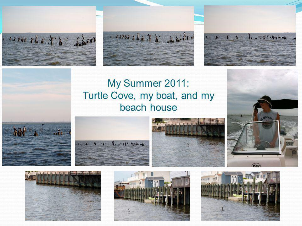 Turtle Cove, my boat, and my beach house