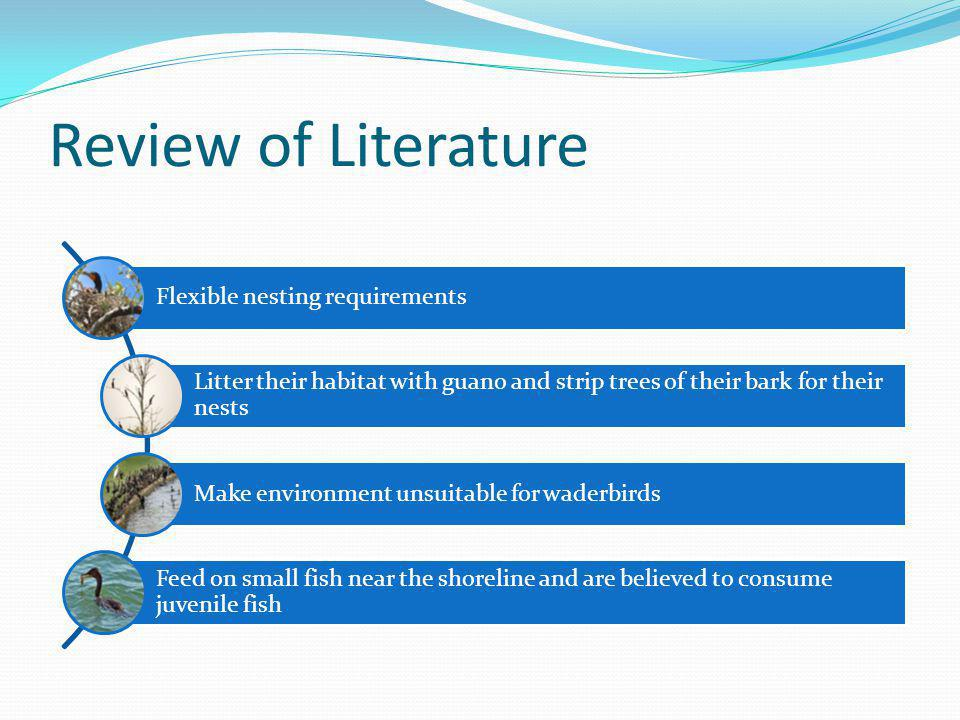 Review of Literature Flexible nesting requirements