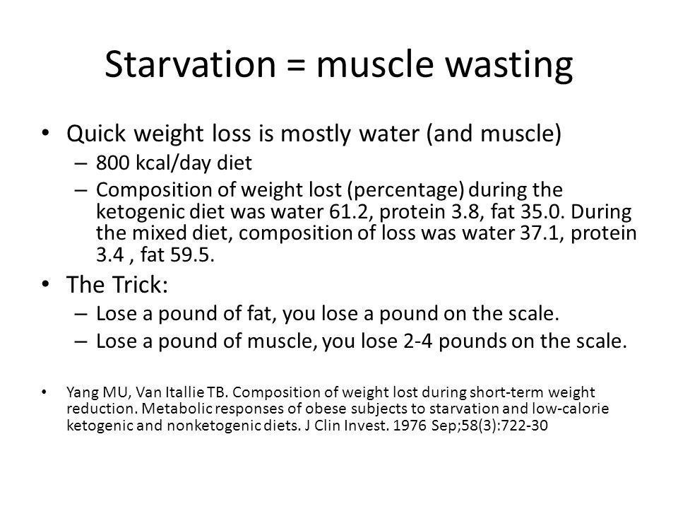 Starvation = muscle wasting