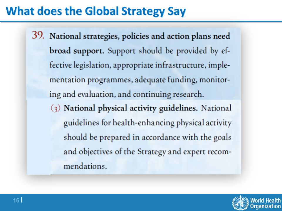 What does the Global Strategy Say
