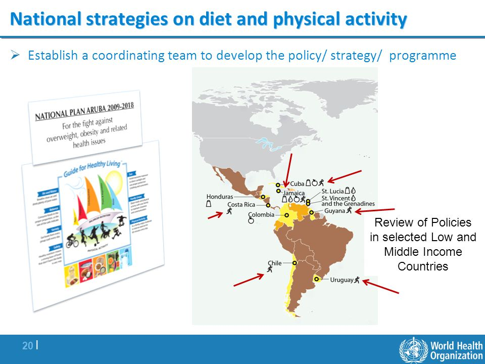 National strategies on diet and physical activity