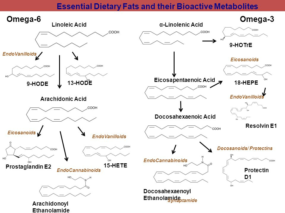 Essential Dietary Fats and their Bioactive Metabolites