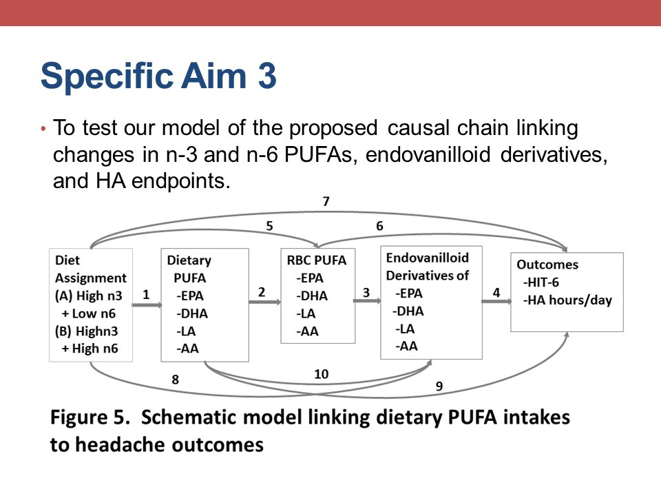Specific Aim 3 To test our model of the proposed causal chain linking changes in n-3 and n-6 PUFAs, endovanilloid derivatives, and HA endpoints.