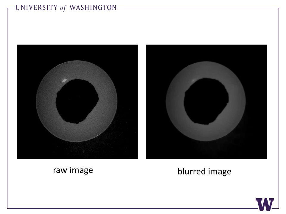 raw image blurred image
