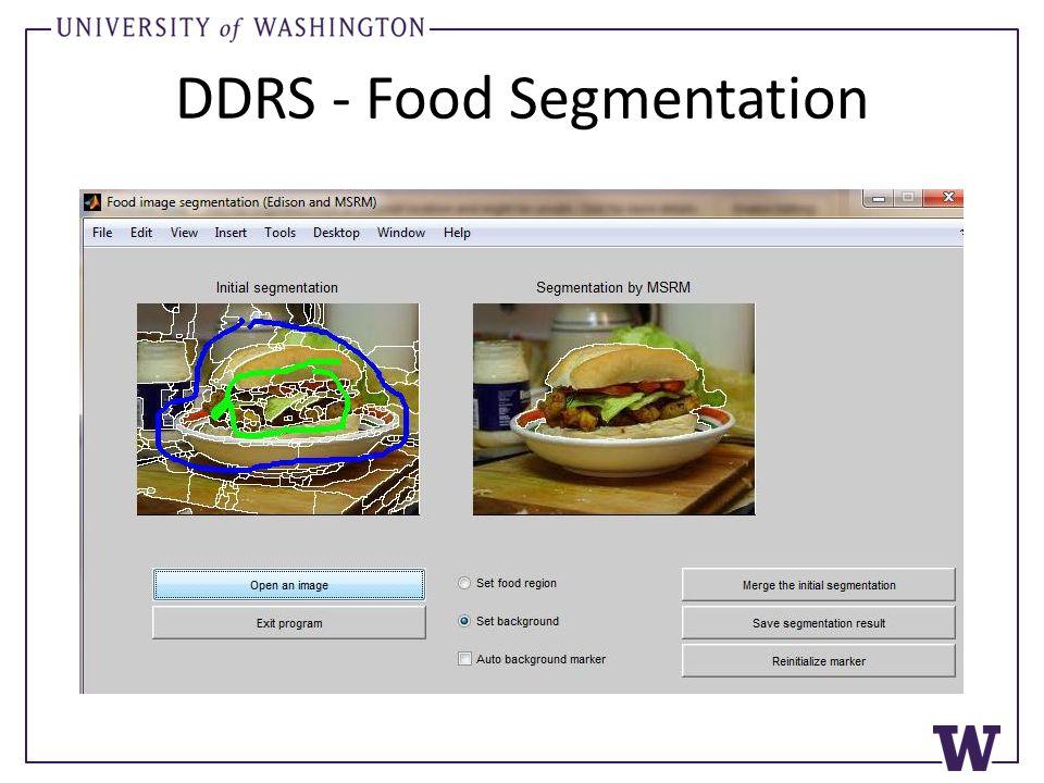 DDRS - Food Segmentation