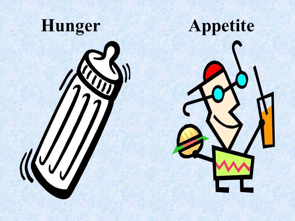 Hunger Appetite