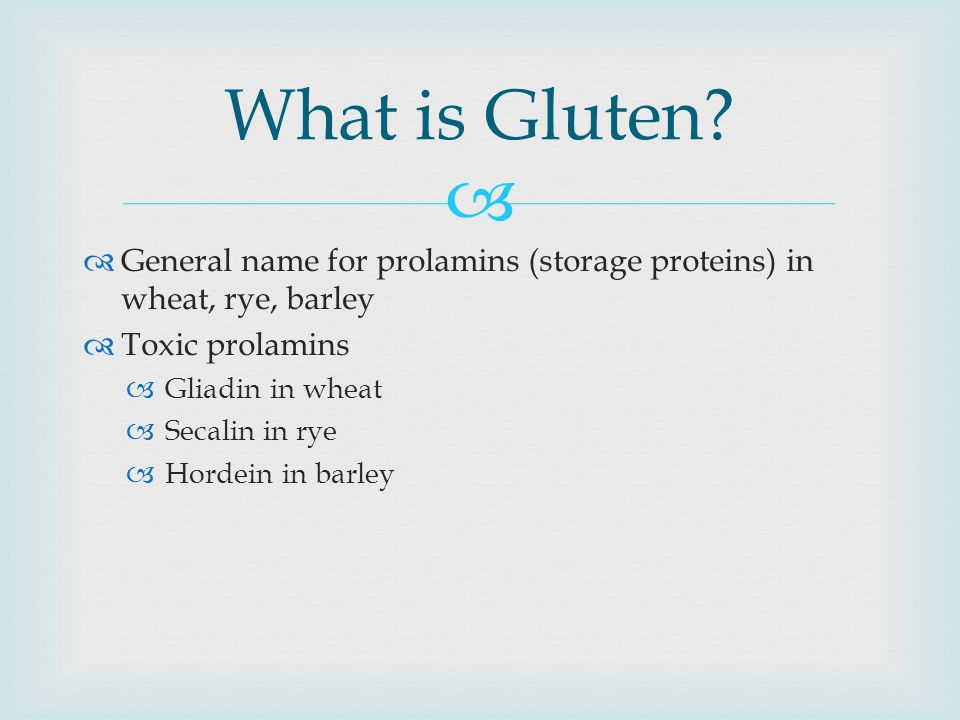 What is Gluten General name for prolamins (storage proteins) in wheat, rye, barley. Toxic prolamins.