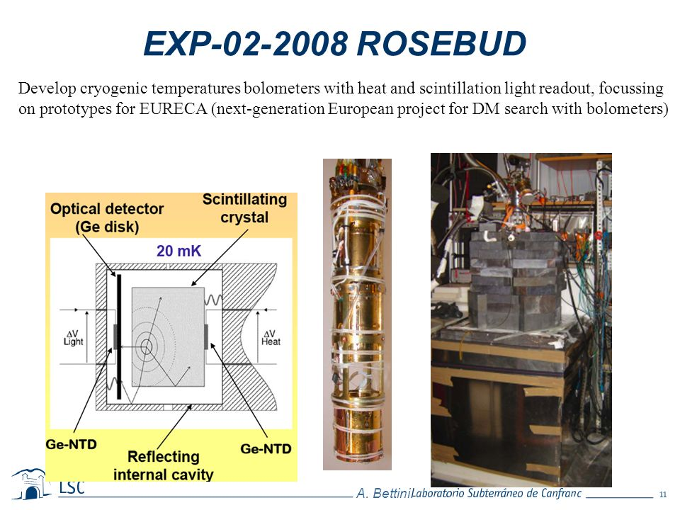 EXP-02-2008 ROSEBUD