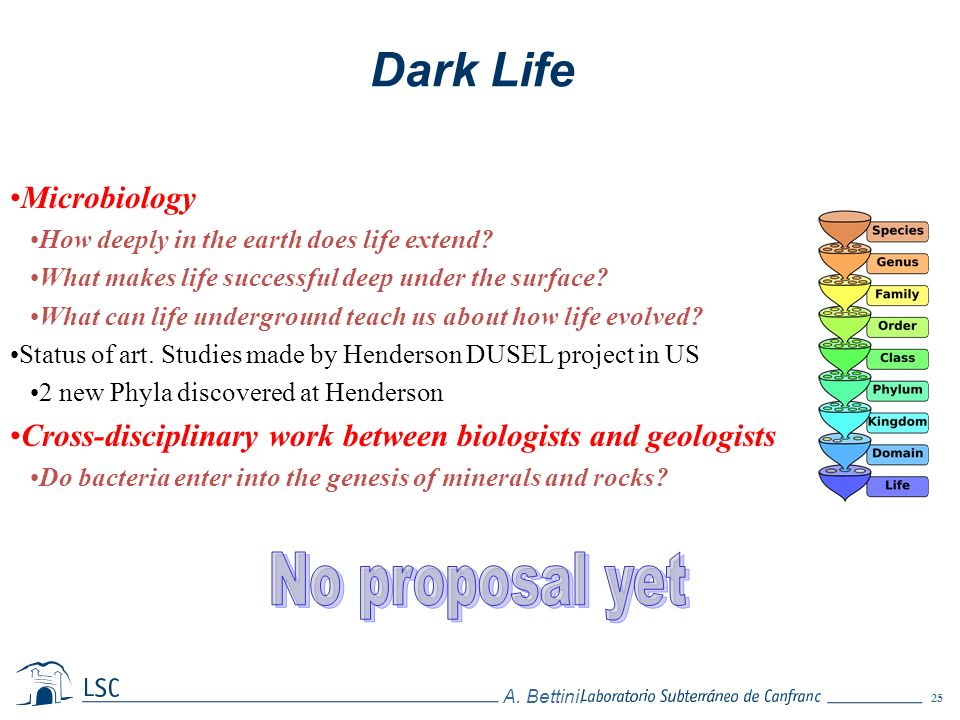 Dark Life No proposal yet Microbiology