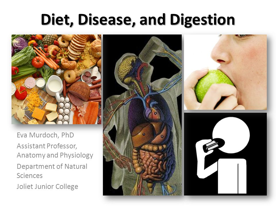 Diet, Disease, and Digestion