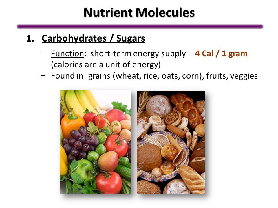 Nutrient Molecules Carbohydrates / Sugars