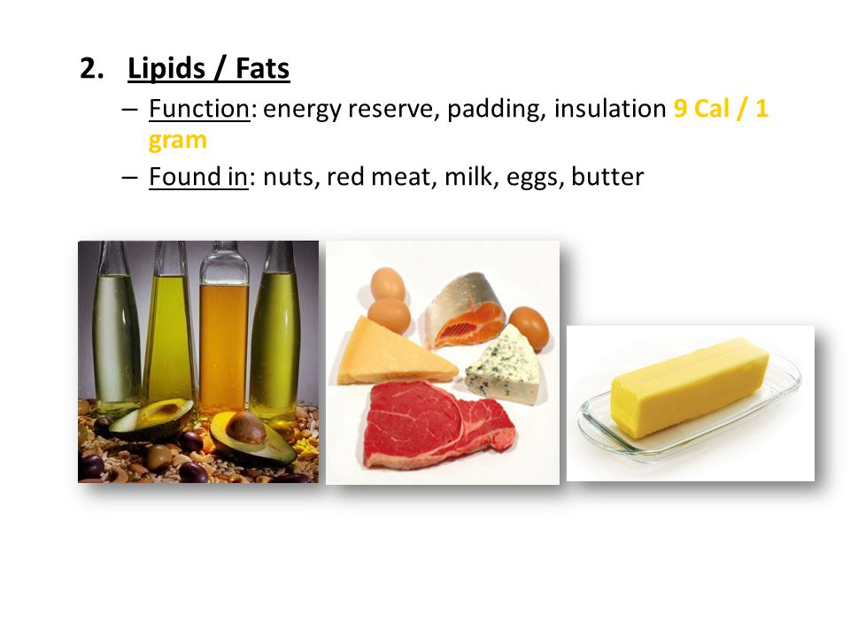 Lipids / Fats Function: energy reserve, padding, insulation 9 Cal / 1 gram.