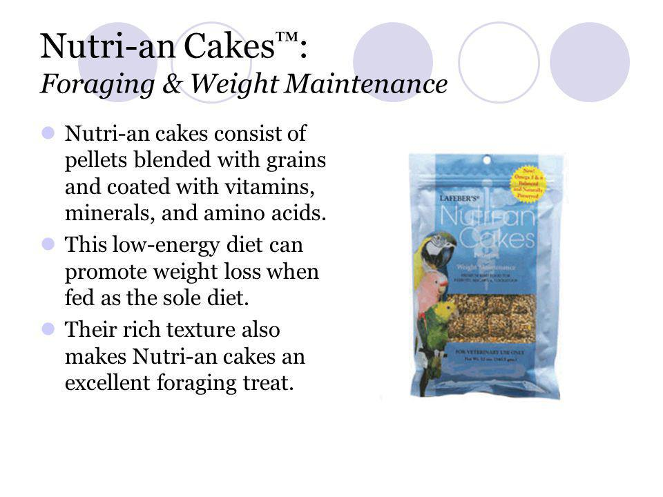 Nutri-an Cakes™: Foraging & Weight Maintenance