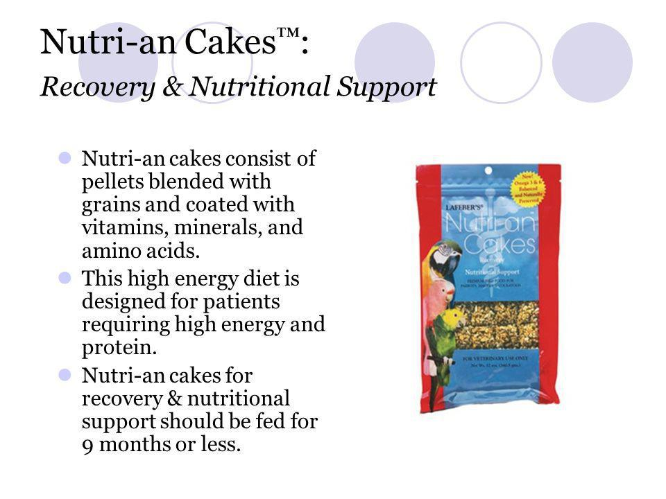 Nutri-an Cakes™: Recovery & Nutritional Support
