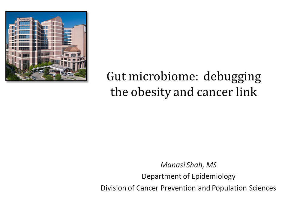 Gut microbiome: debugging the obesity and cancer link