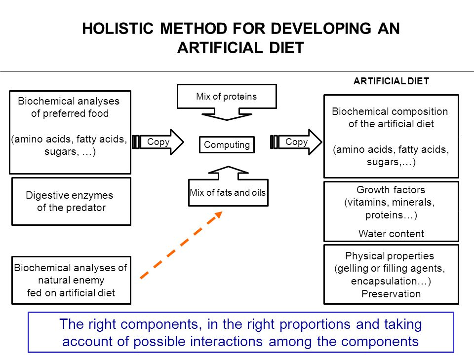HOLISTIC METHOD FOR DEVELOPING AN ARTIFICIAL DIET