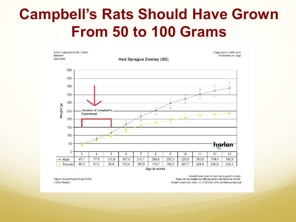 Campbell's Rats Should Have Grown From 50 to 100 Grams