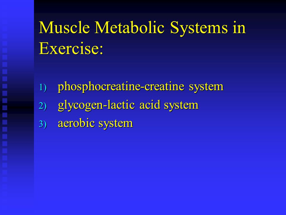 Muscle Metabolic Systems in Exercise:
