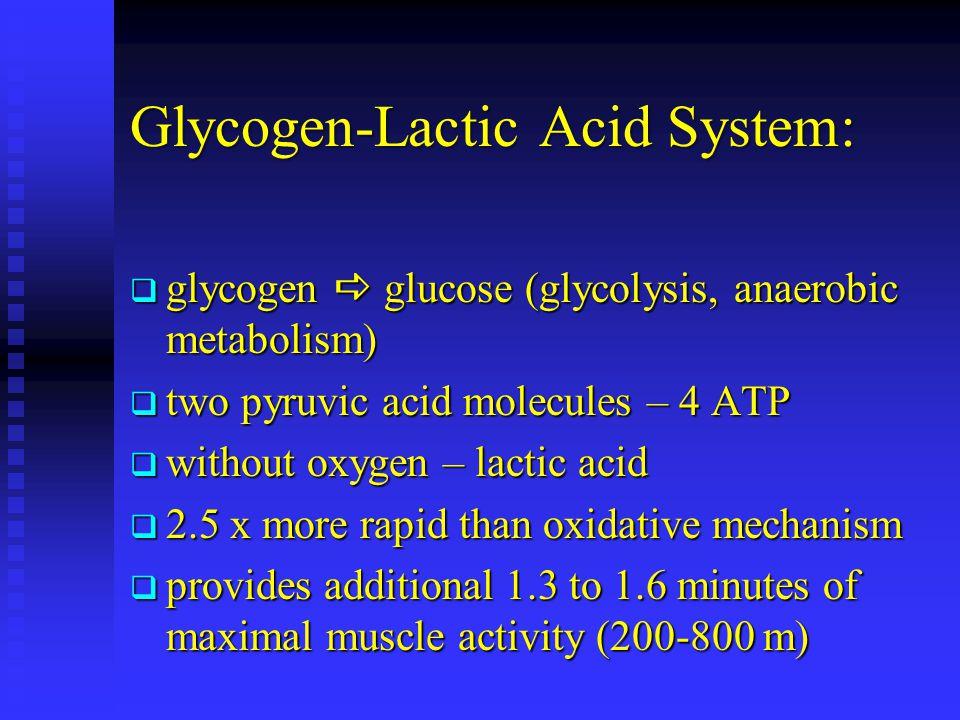 Glycogen-Lactic Acid System: