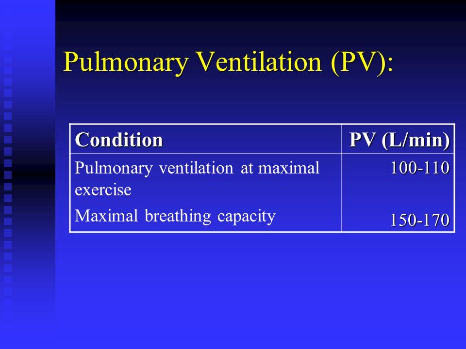 Pulmonary Ventilation (PV):