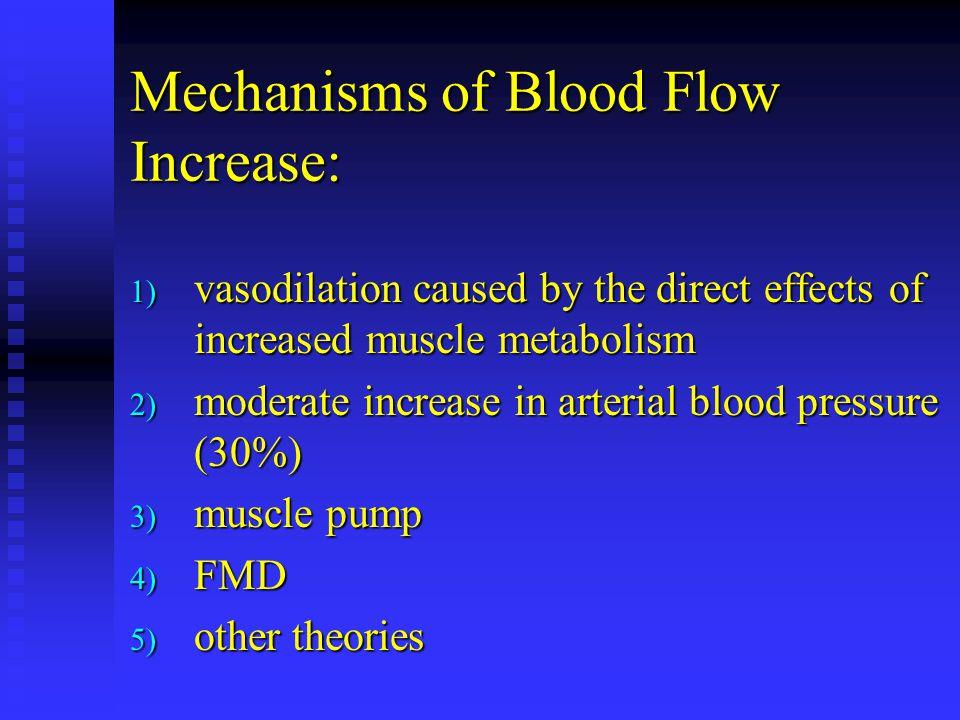 Mechanisms of Blood Flow Increase: