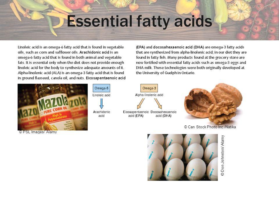 Essential fatty acids © Can Stock Photo Inc./Natika