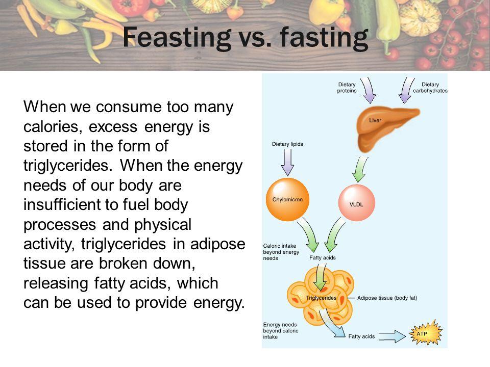 Feasting vs. fasting