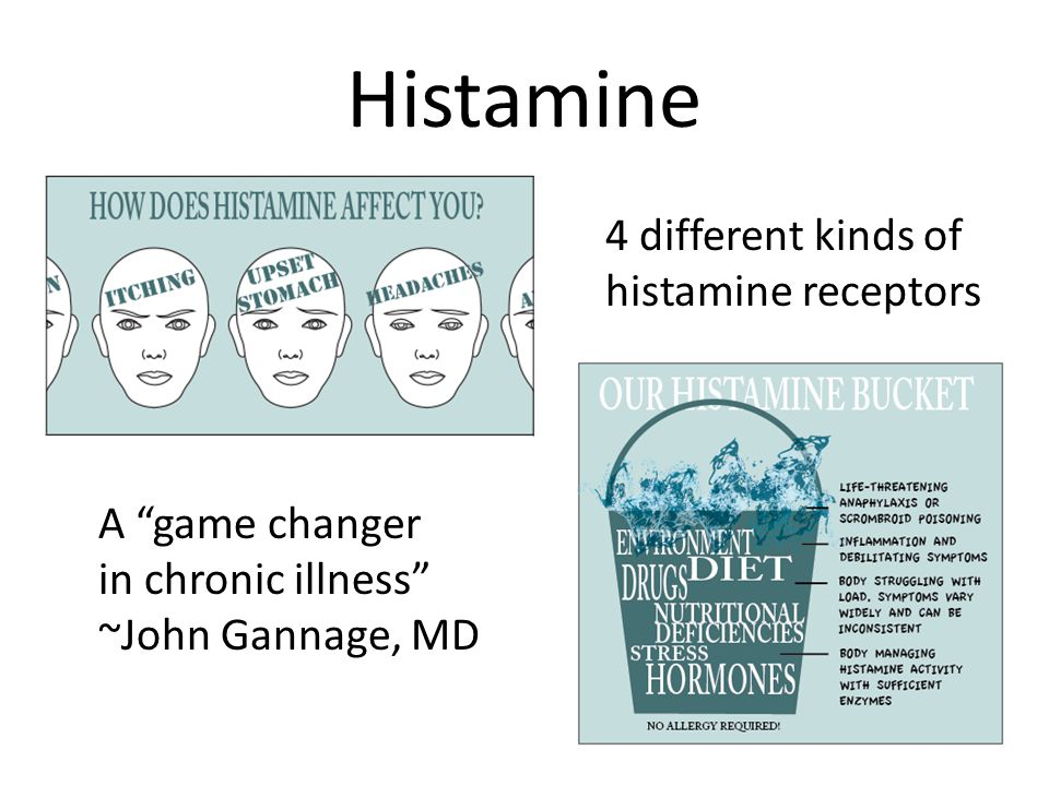 Histamine 4 different kinds of histamine receptors A game changer