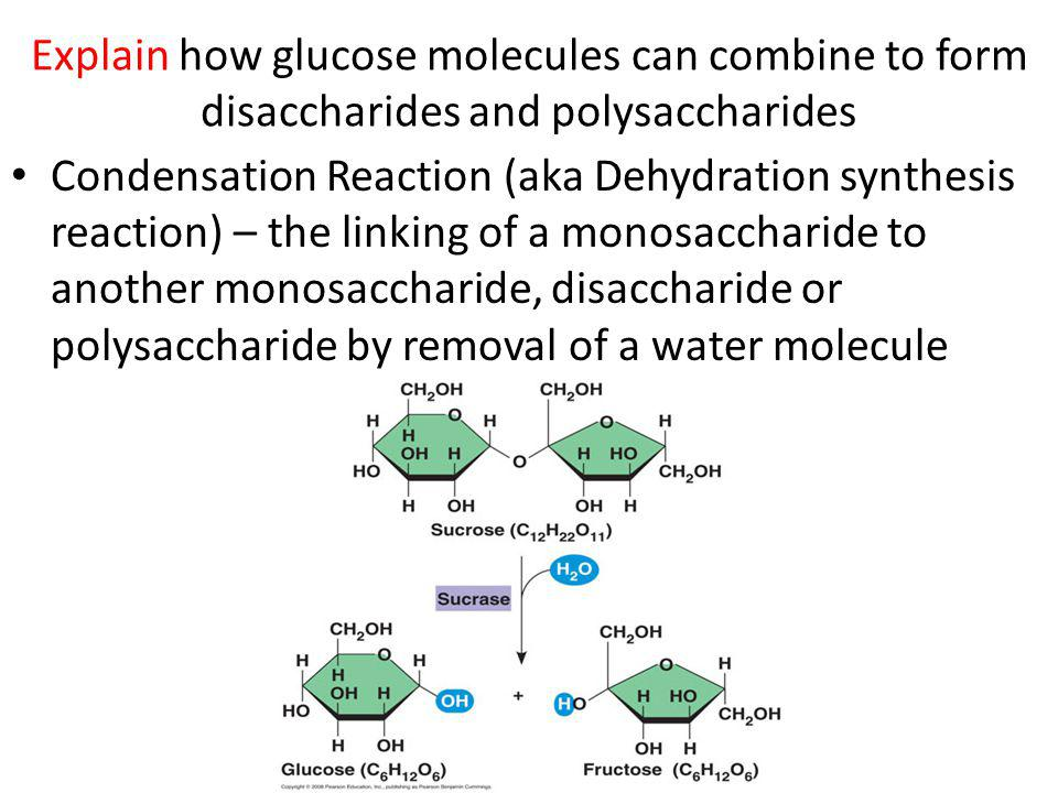 Explain how glucose molecules can combine to form disaccharides and polysaccharides