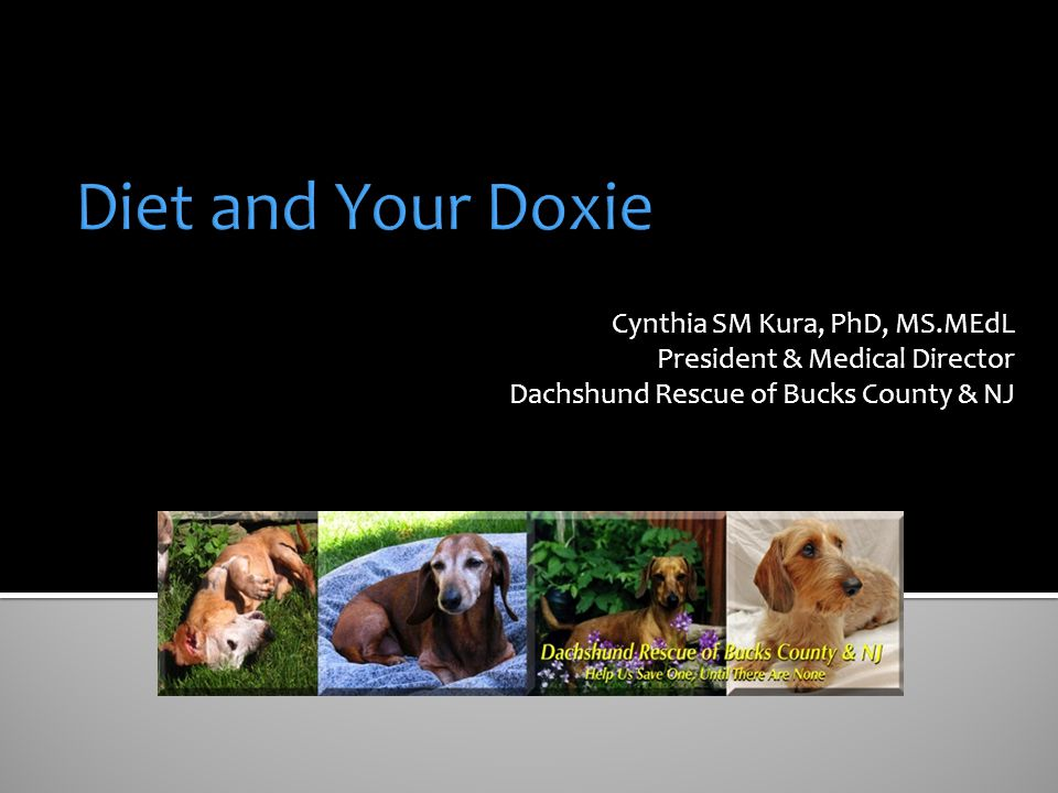 Diet and Your Doxie Cynthia SM Kura, PhD, MS.MEdL