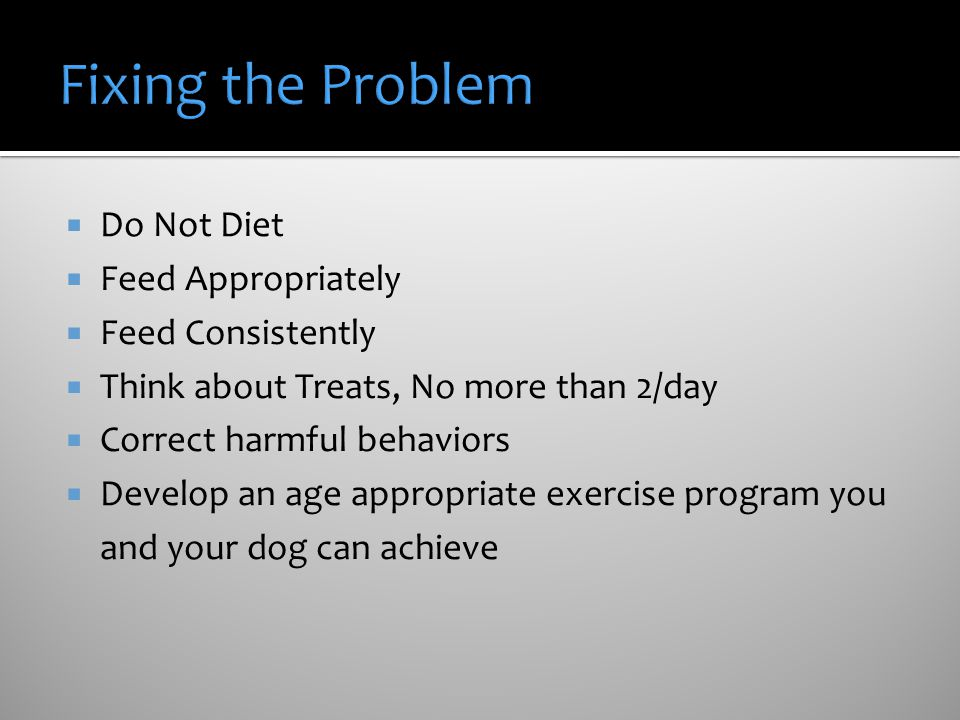 Fixing the Problem Do Not Diet Feed Appropriately Feed Consistently
