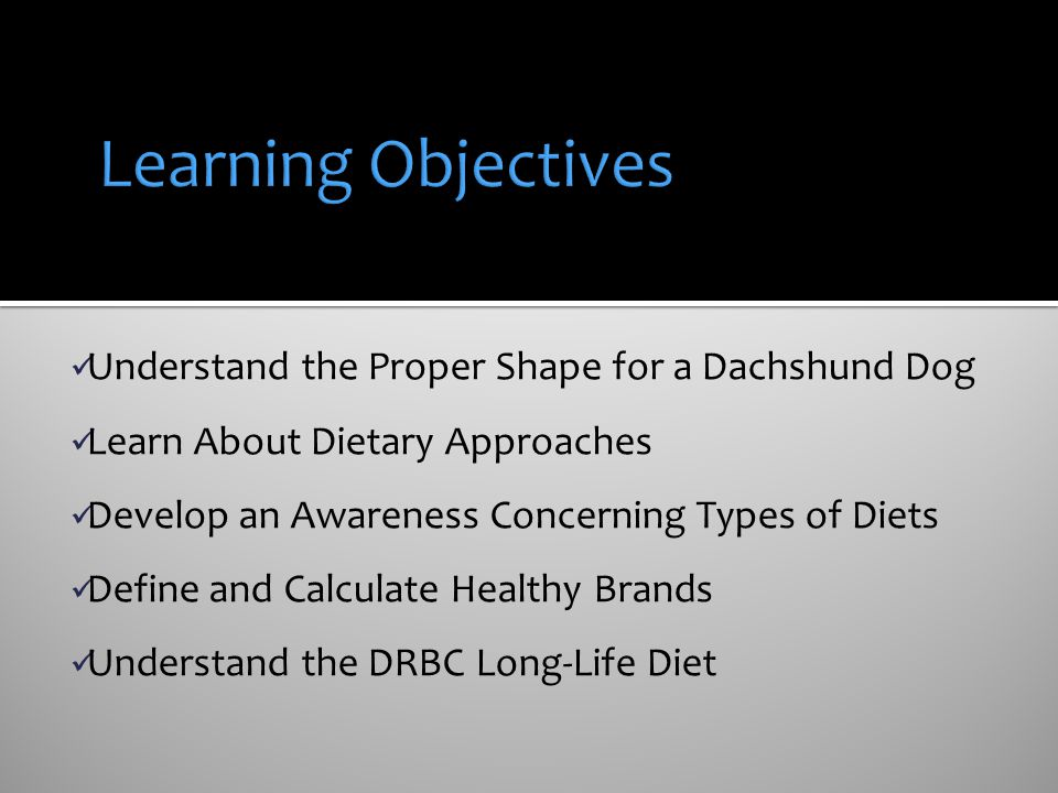 Learning Objectives Understand the Proper Shape for a Dachshund Dog