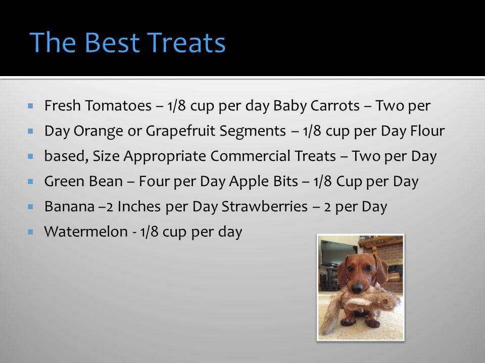The Best Treats Fresh Tomatoes – 1/8 cup per day Baby Carrots – Two per. Day Orange or Grapefruit Segments – 1/8 cup per Day Flour.