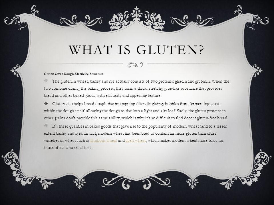 What is Gluten Gluten Gives Dough Elasticity, Structure.