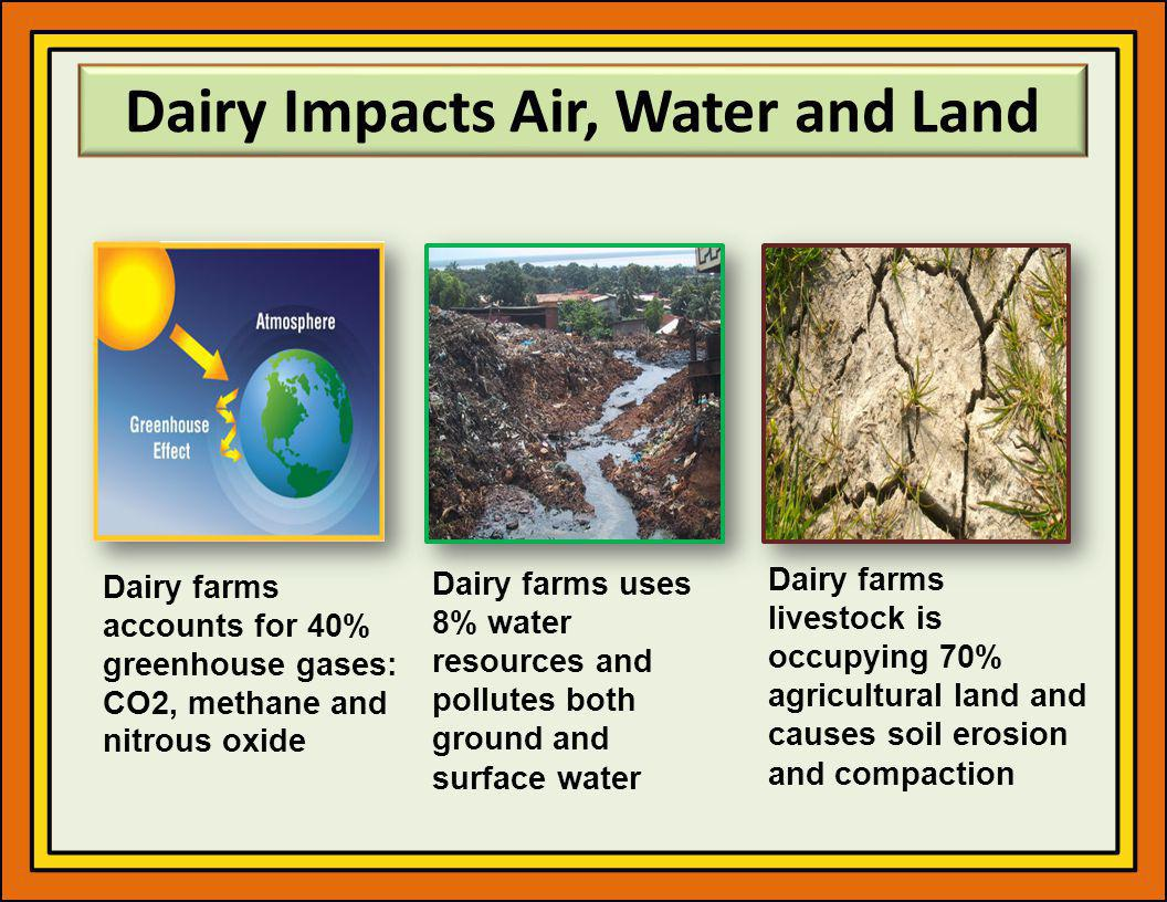 Dairy Impacts Air, Water and Land