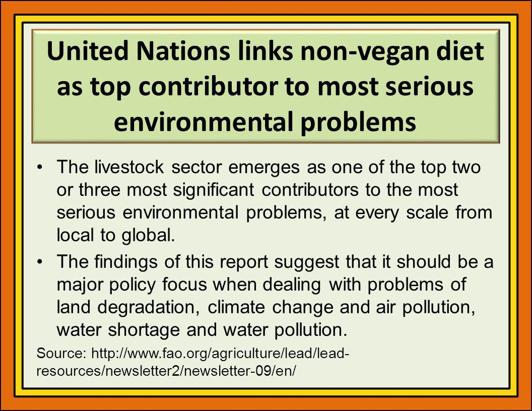 United Nations links non-vegan diet as top contributor to most serious environmental problems
