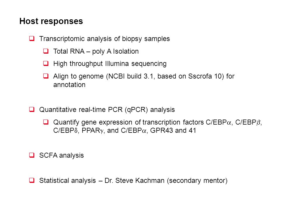 Host responses Transcriptomic analysis of biopsy samples