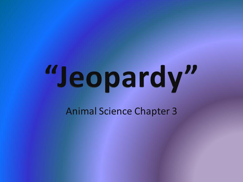 Animal Science Chapter 3