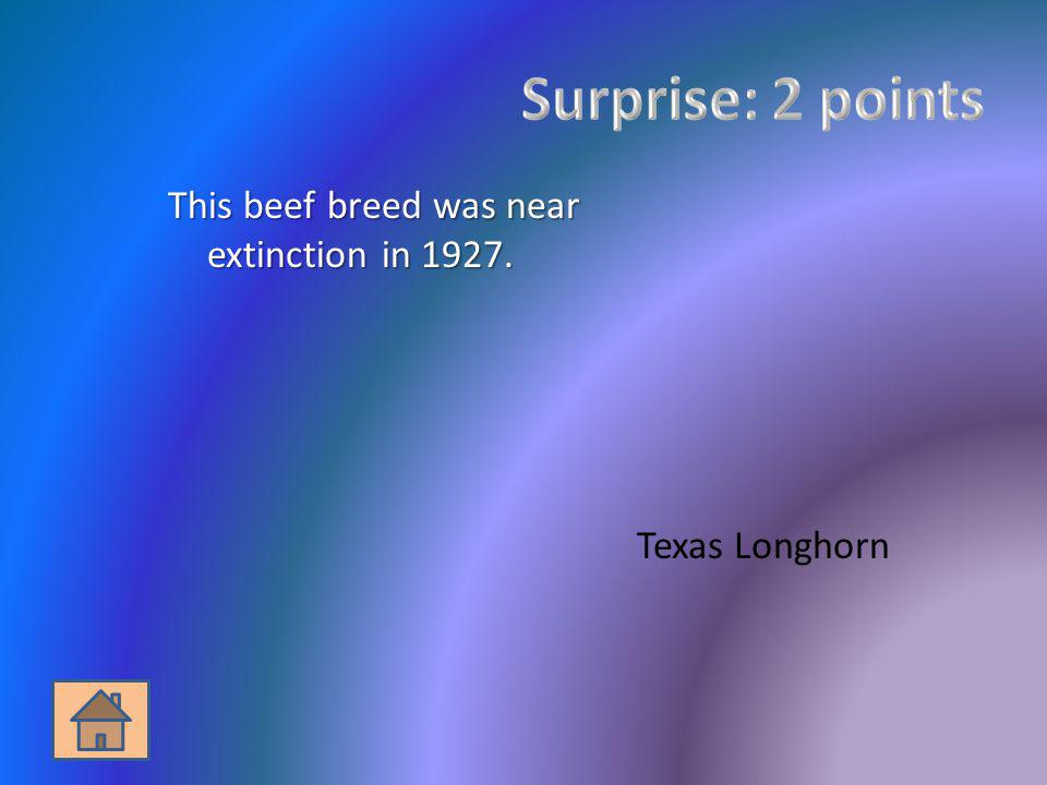 Surprise: 2 points This beef breed was near extinction in 1927.