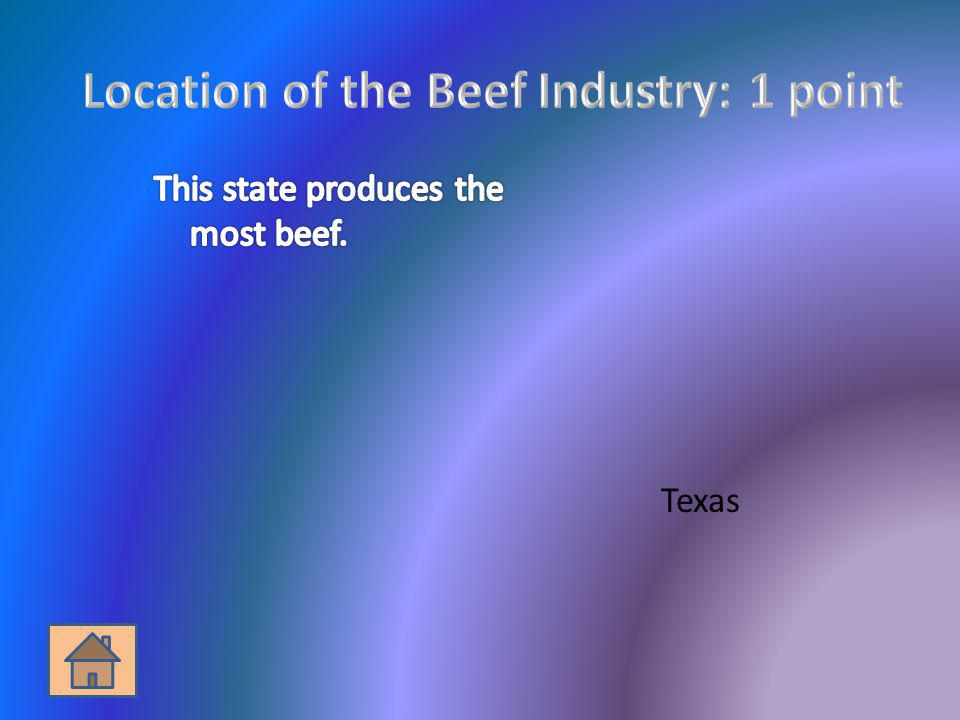 Location of the Beef Industry: 1 point