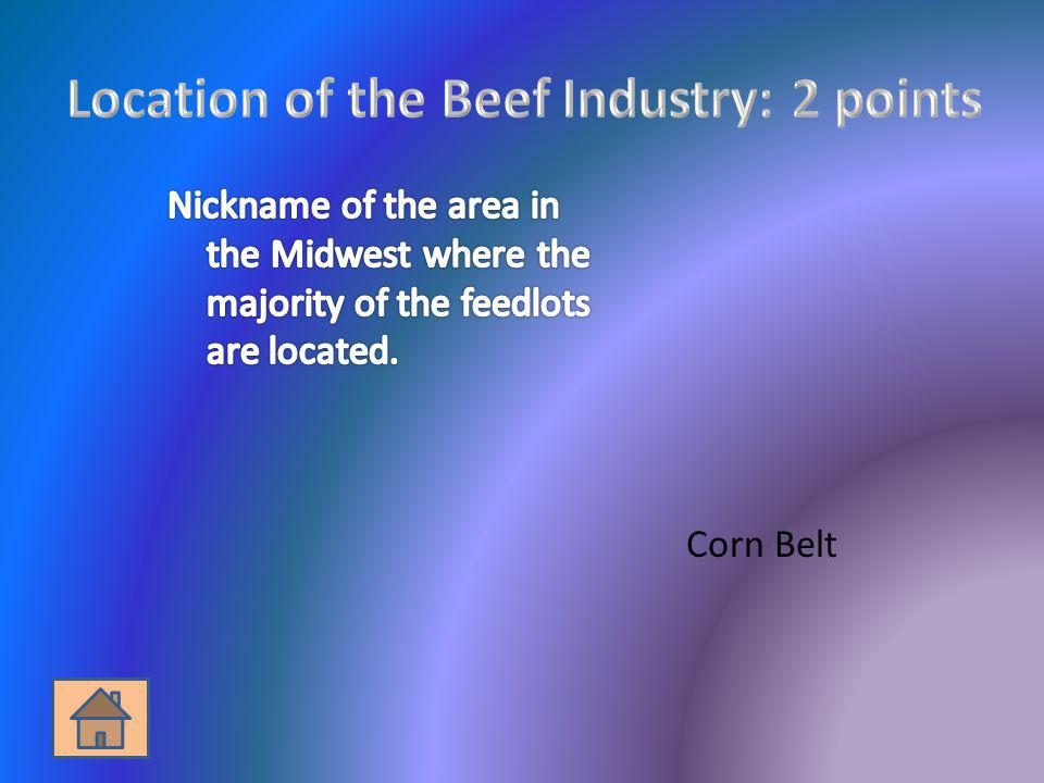 Location of the Beef Industry: 2 points
