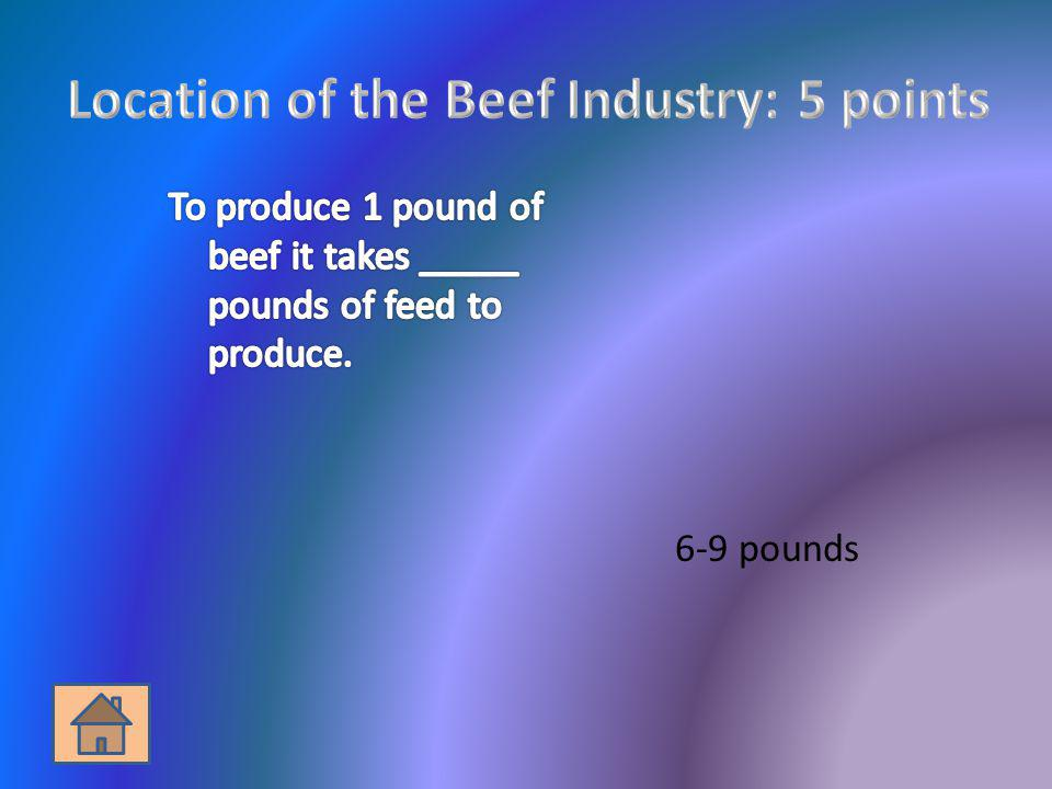 Location of the Beef Industry: 5 points