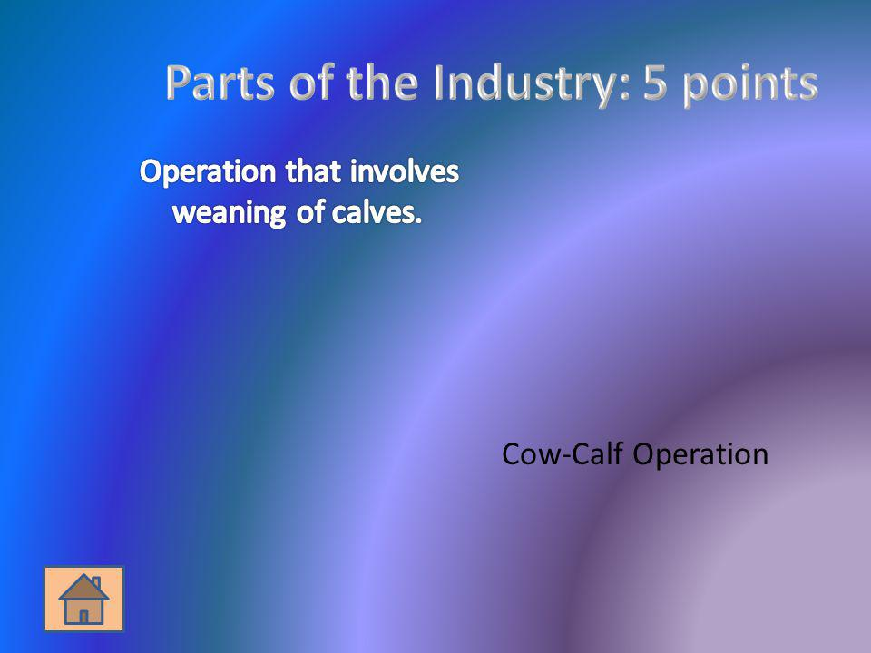 Parts of the Industry: 5 points