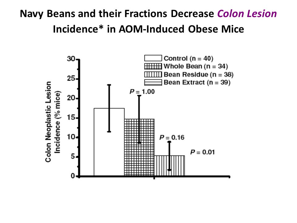Navy Beans and their Fractions Decrease Colon Lesion Incidence