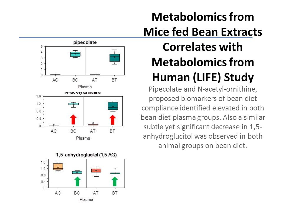 Metabolomics from Mice fed Bean Extracts Correlates with Metabolomics from Human (LIFE) Study Pipecolate and N-acetyl-ornithine, proposed biomarkers of bean diet compliance identified elevated in both bean diet plasma groups.