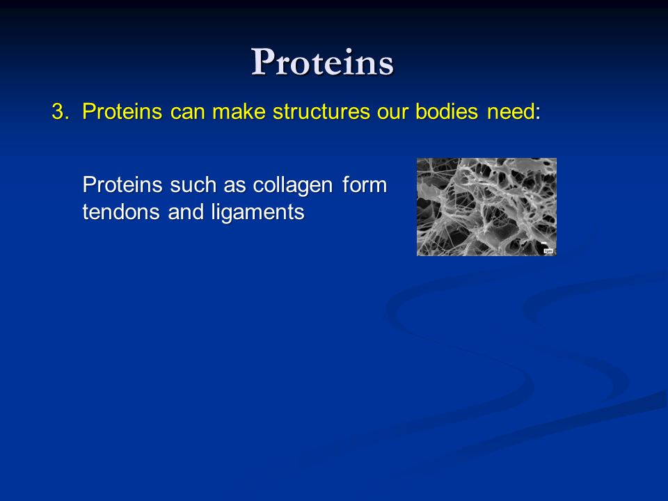 Proteins 3. Proteins can make structures our bodies need: