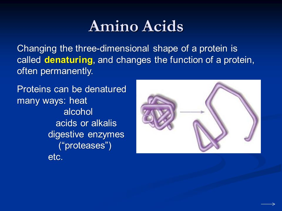 Amino Acids Changing the three-dimensional shape of a protein is called denaturing, and changes the function of a protein, often permanently.