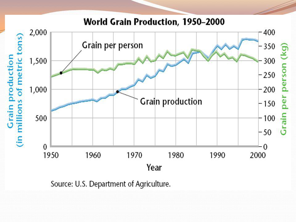 World Food Problems
